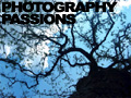 image representing the Photography community
